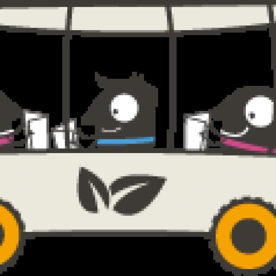 stricki_v_avtobusu-noga