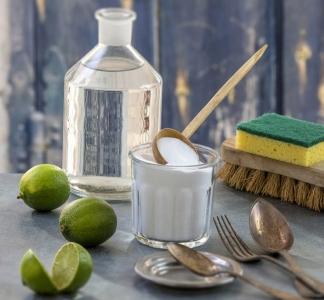 Delavnici – naravna čistila (Rače, Duplek)